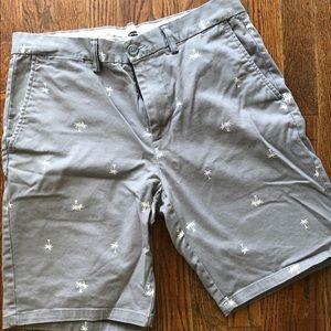 Men Palm Tree patterned Shorts